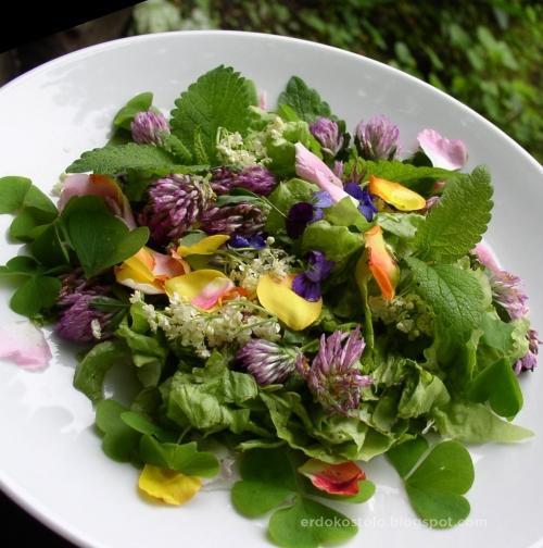 virágos saláta 2