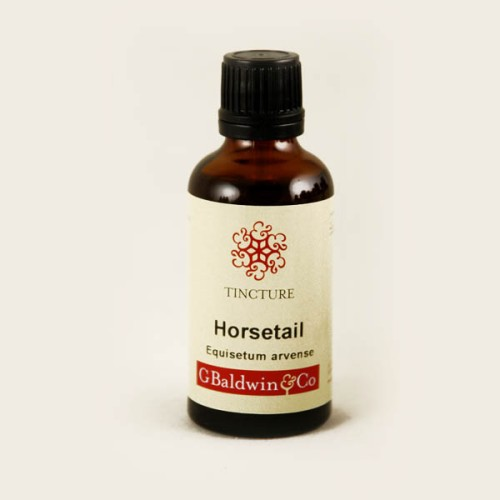 horsetail_baldwins_herbal_tinchers_3